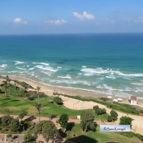 Netanya Apartments - SeaView luxury dream penth  center, Netanya - Image 104751