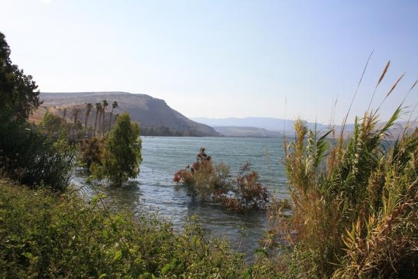 Tiberias Apartments - Apartment by the lake of Galilee, Tiberias - נופש בצפון