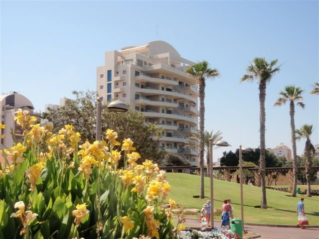 Netanya Apartments - Netanya Dreams apartments W15, Netanya - Image 52939