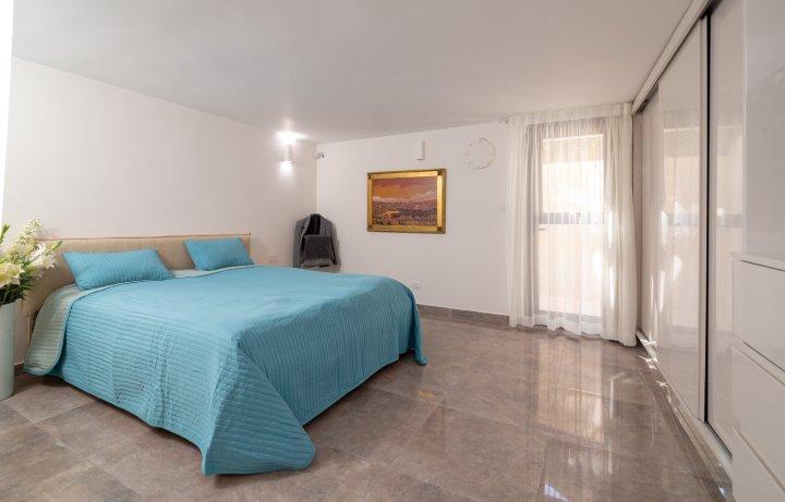 Jerusalem Apartments - Exquisite duplex apt in Talbiya , Jerusalem - Image 124551