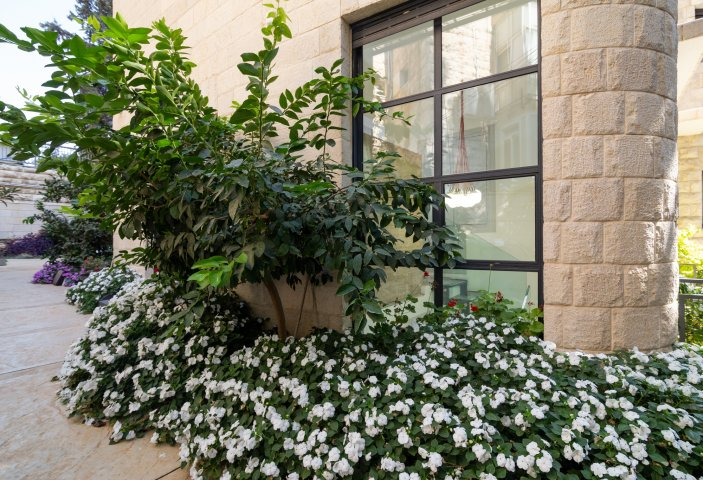 Jerusalem Apartments - Exquisite duplex apt in Talbiya , Jerusalem - Image 124549