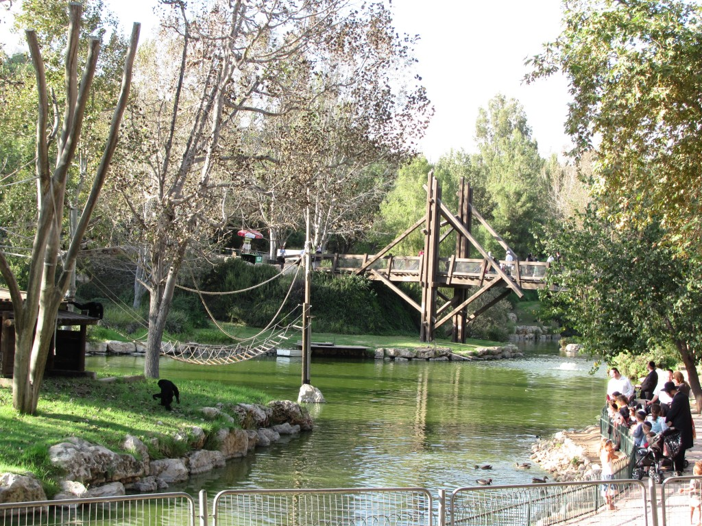 Jerusalem_Zoo_lake